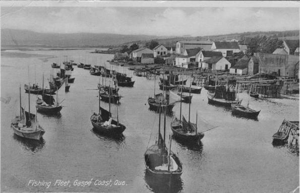 barachois-fishing-fleet-bwhole