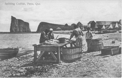 Splitting Codfish, Perce (Quebec)