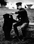 Colebourn, bear cub, World War I