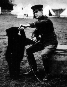 Colebourn, bear cub, World War I