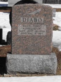 Iroquois Genealogy & Surnames