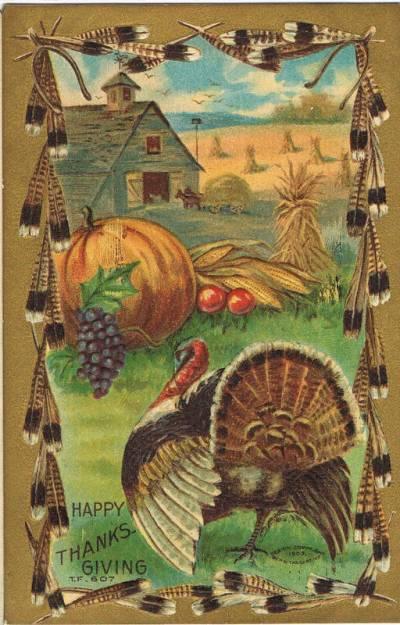 farmhouse, wheat fields, turkey, pumpkin, grapes, turkey feathers