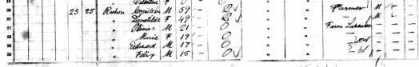 Rochon Cyrlle Guay Domitlde Genealogy 1881