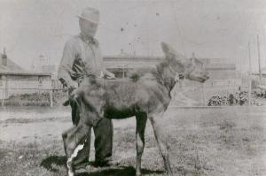 Israel Tekarihoken Rice b 1870 Gogoma