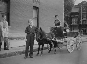 QUEBEC SURNAMES: Gamache + Cadot, Cloutier, Fortin | LOCATIONS: Chateau-Richer, Breval, Quebec | Vintage b/w view of Rene Gamache sits in delivery wagon of butcher Y Desautels