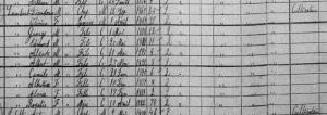 Census Lambert Dieudonne